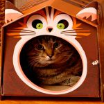 Фото 28: Кошачий домик