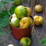 Фото 31: Овощной физалис