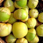 Фото 3: Овощной физалис