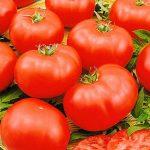 Фото 30: Сорт помидор