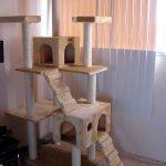 Фото 64: Уголок для кошек