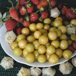 Фото 18: Физалис ягодный