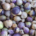Фото 62: Фиолетовый физалис