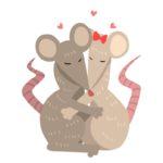 Фото 68: Валентинка с крысами