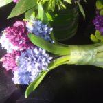 Фото 108: Небольшой букетик из гиацинтов на 8 марта