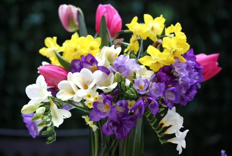 Весенняя композиция из первоцветов на 8 марта