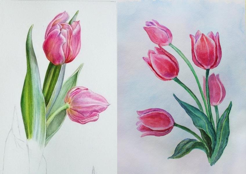 Нарисовать букеты тюльпанов акварелью