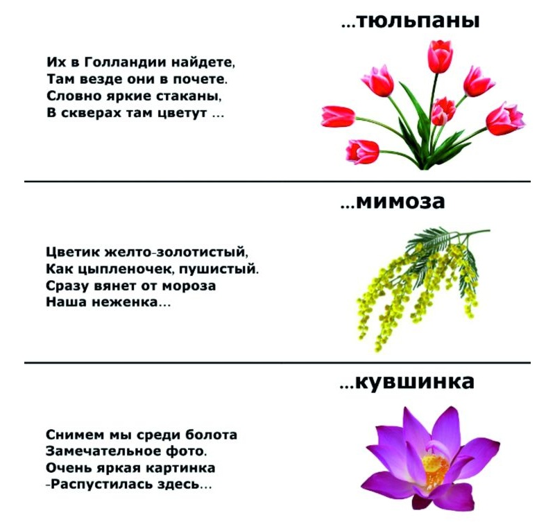 Загадки о цветах на 8 марта