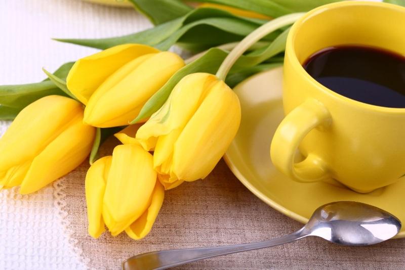 Желтые тюльпаны в подарок