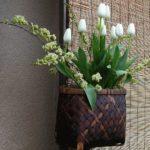 Фото 84: Цветочная икебана на 8 Марта с тюльпанами
