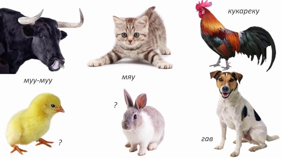 Конкурс голоса животных для детей