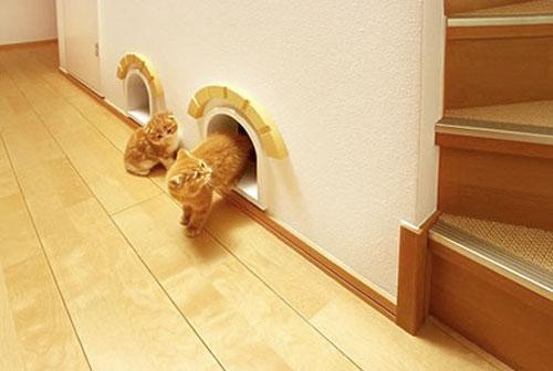 Домик для кошки своими руками в виде мышиной норки