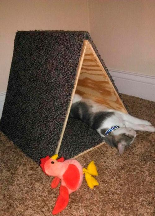 Домик для кошки: мастер-класс