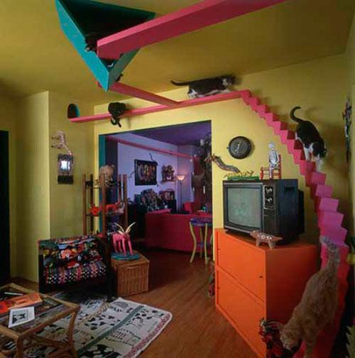 Лабиринт и домик для кошки своими руками в маленькой квартире