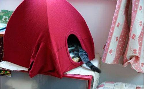 Как сшить домик для кошки из старой майки: мастер-класс, шаг 2