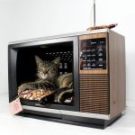 Фото 55: Кошачий домик из старого телевизора