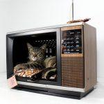 Кошачий домик из старого телевизора