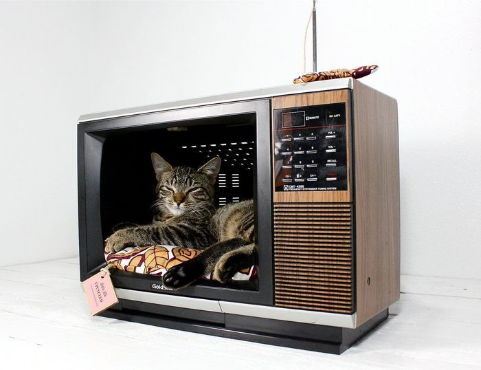 Домик из монитора для кошки своими руками 105