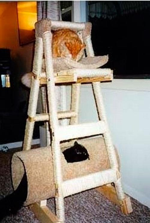 Домик для кошки: мастер-класс по созданию кошачьего дерева