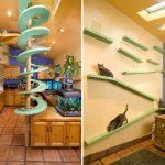 Полки и лабиринты настенные для кошек
