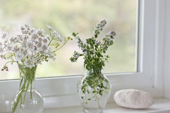 Расположение цветов в ванной комнате на подоконнике