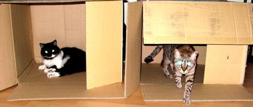 Делаем домик для кошки из коробки