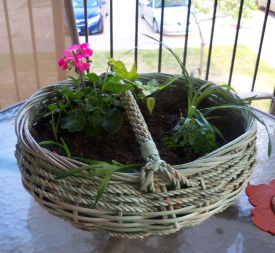 Применение лозы для изготовления цветочных горшков