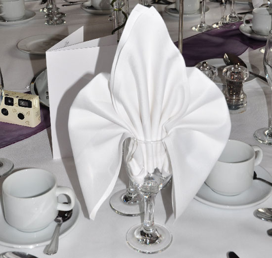 Busy_Bee_Linen_Napkins