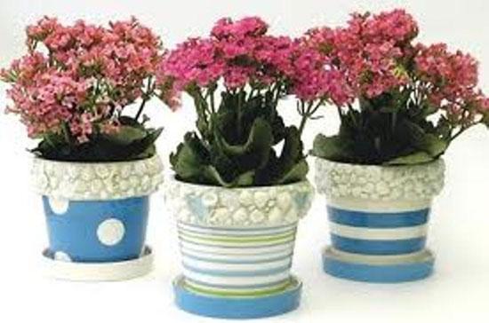 Декорирование цветочных горшков с помощью ракушек