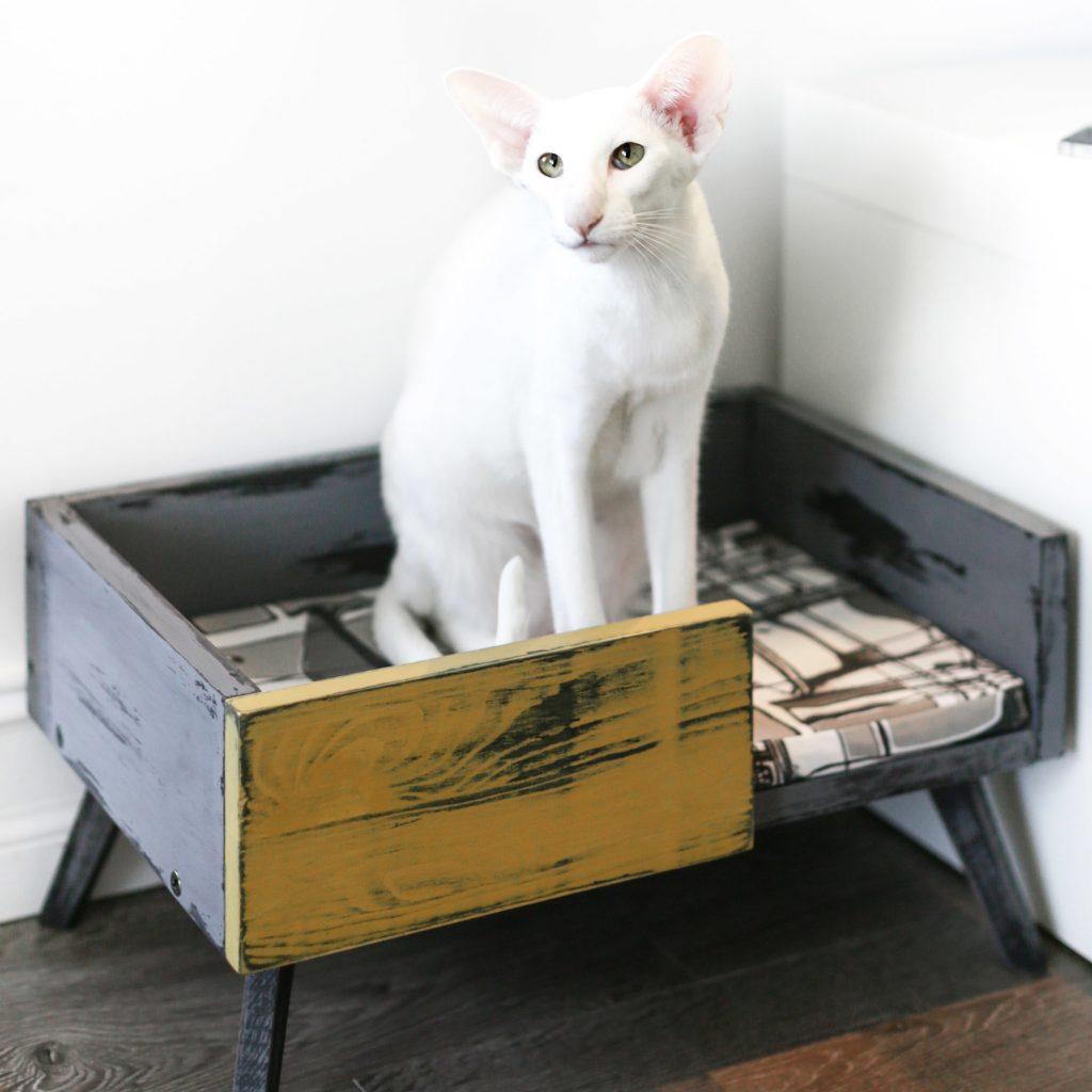 Как самому сшить лежанку для кошек фото 318
