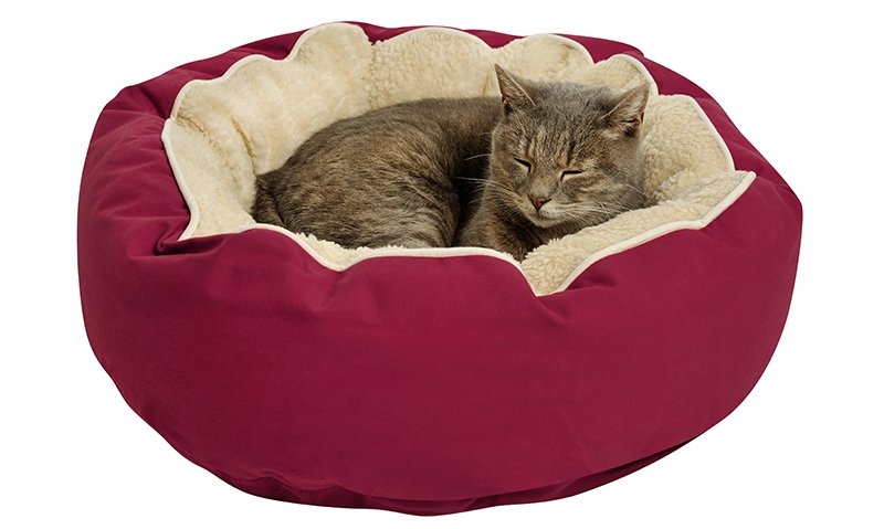 Лежанка для кошки по размеру