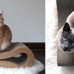 Фото 66: Современные лежанки для кошек с твердой поверхностью