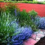 Фото 230: Цветочная клумба на даче