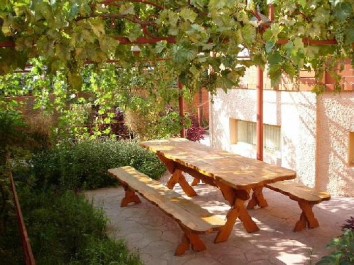 Беседка с виноградом в саду