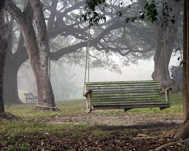 Качели на дереве занимают минимум места на участке