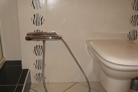 Унитаз и душ обычные
