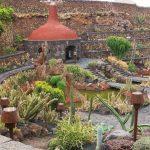 Фото 67: Пустынный стиль ландшафтного дизайна