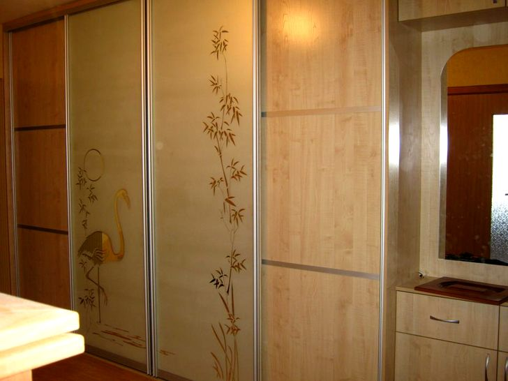 Встроенный шкаф с рисунком на двери