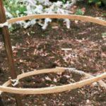 Фото 60: Опора для выращивания фрезии в открытом грунте