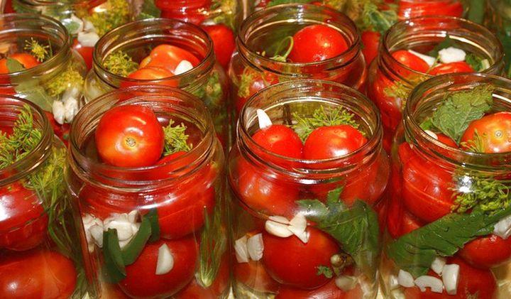 засолка урожая томатов