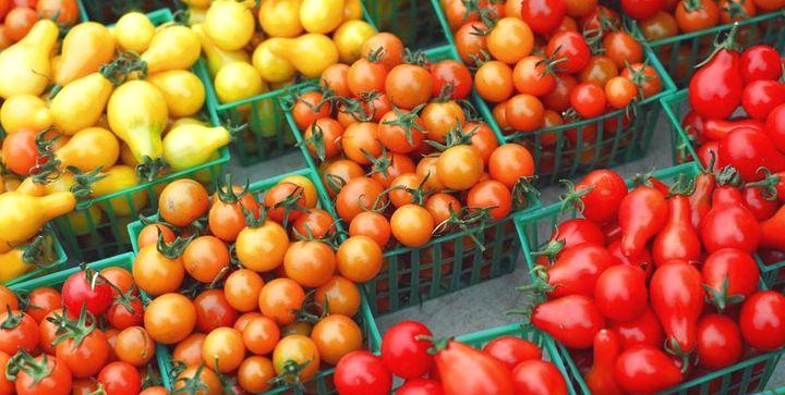 разнообразие формы помидор
