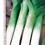 Фото 49: Семена лука – порея Коламбус