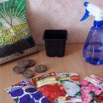 Фото 48: Необходимое для выращивания петуний в торфяных таблетках