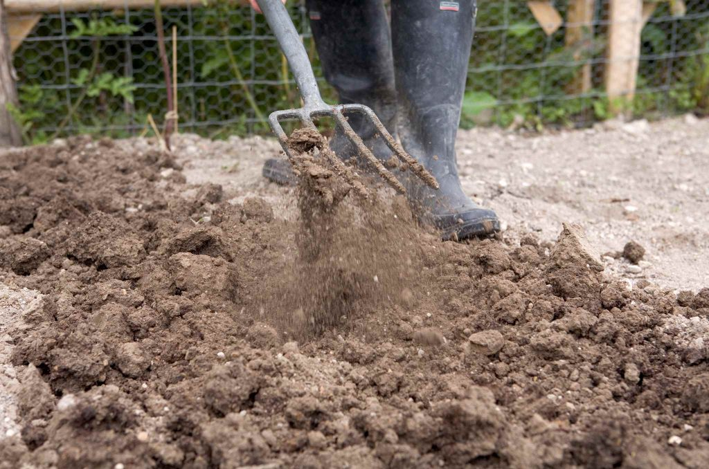 Рыхление почвы перед посадкой лука–порея