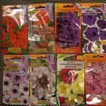 Фото 40: Семена петунии покупные