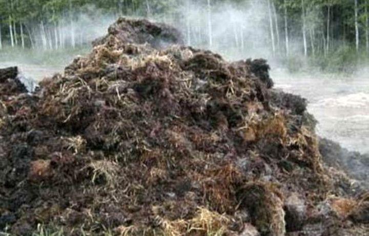 Ферментация компоста