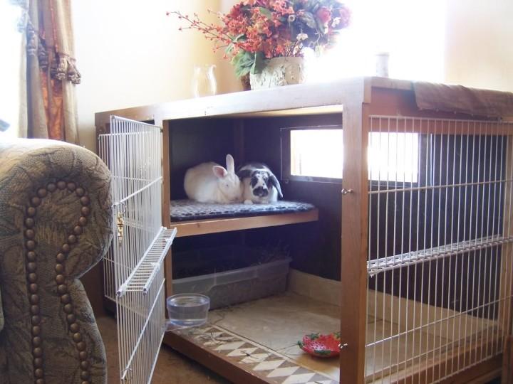 Клетка для содержания кроликов в помещении