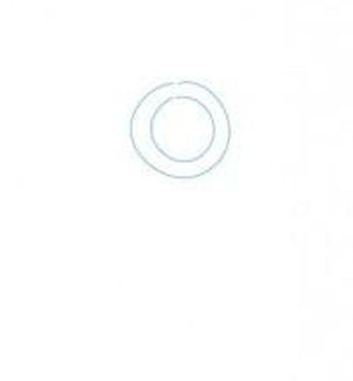 Второй круг меньшего диаметра
