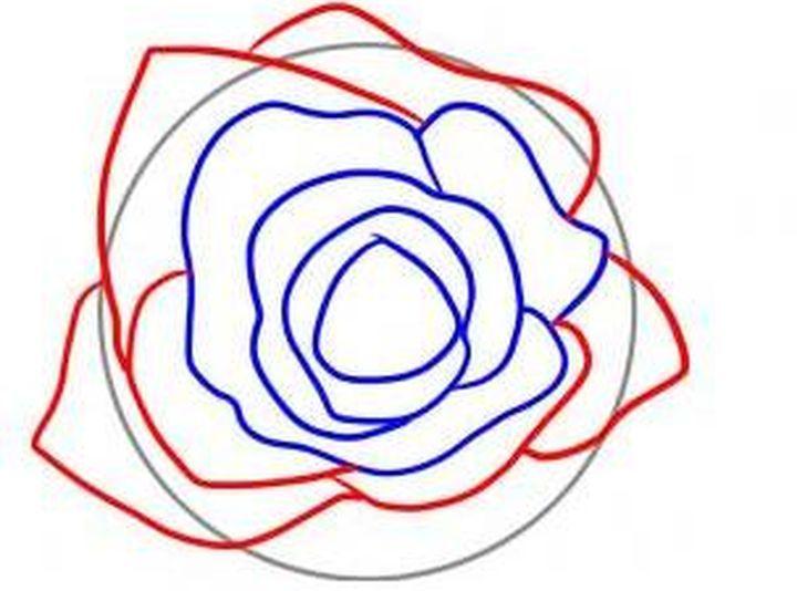 Форма лепестков розы
