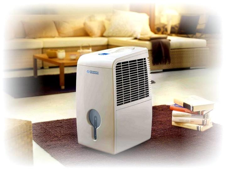 Осушители воздуха для квартиры2